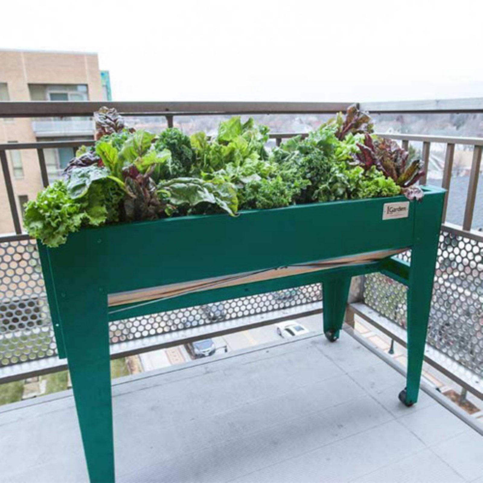 LGarden Balcony Raised Gardening System