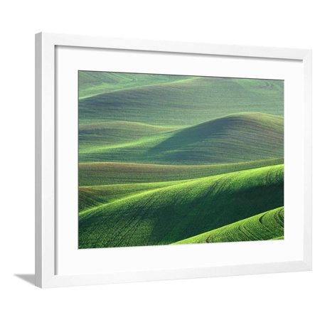Wheat Springs in the Hills of the Palouse Country, Idaho, USA Framed Print Wall Art By Chuck Haney