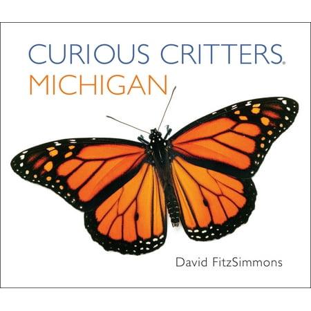 Michigan (Board Book) - Curious Critters