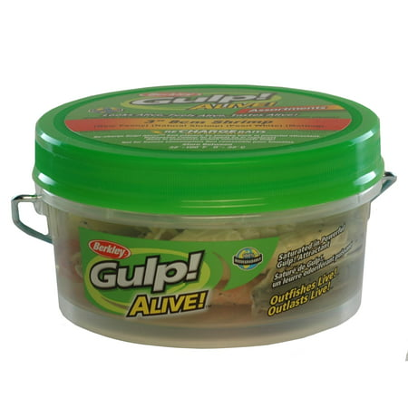 Berkley Gulp 4 Shrimp (Berkley Gulp! Alive! Shrimp Assortment Soft Bait 3