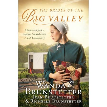 The Brides of the Big Valley : 3 Romances from a Unique Pennsylvania Amish (Romance Bib)