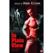 In Plain View : Hot Public Erotica