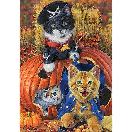 Halloween Kittens Garden Flag Pirate Jack o'Lantern Count Cats 12.5