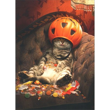 Avanti Press Cat Under Candy Bucket Funny / Humorous Halloween Card - Halloween Candy Buckets