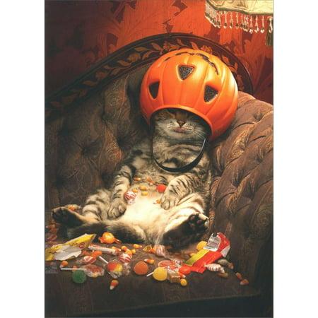 Avanti Press Cat Under Candy Bucket Funny / Humorous Halloween Card](Funny Halloween Cats)