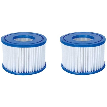 58477E SaluSpa Antimicrobial Antibacterial Type VI Filter Cartridges, Replaces the filter in your SaluSpa hot tub By (Best Way To Strengthen Your Wrists)