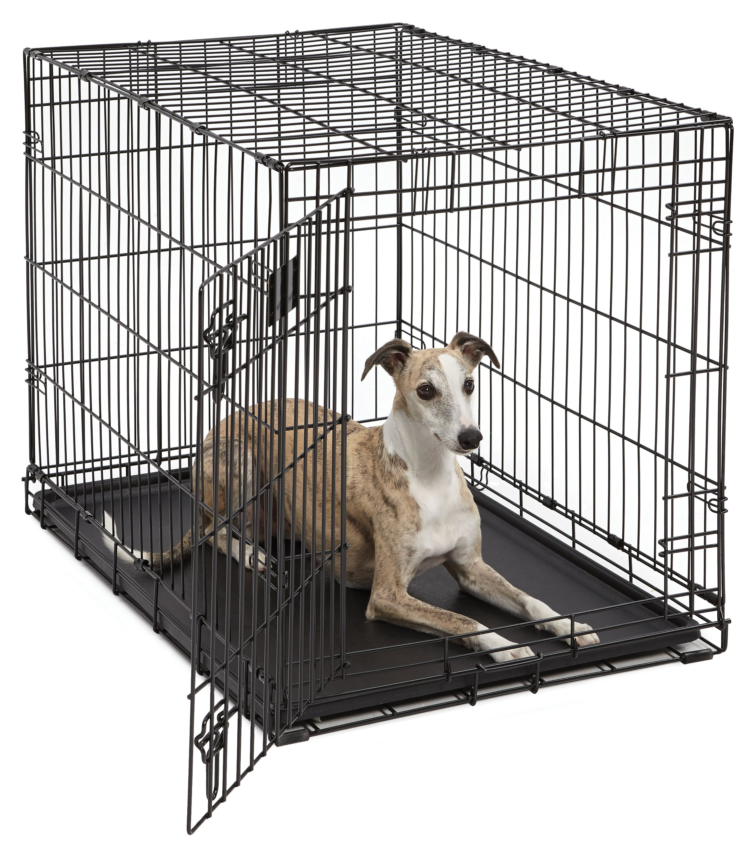 """Midwest 36"""" Life Stages Single Door Dog Crate by Mid-West Metal Products"""