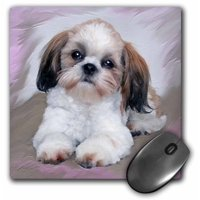 3dRose Shih Tzu puppy, Mouse Pad, 8 by 8 inches