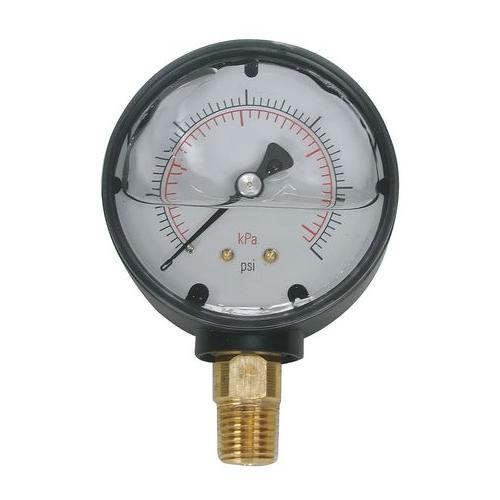 4FLA4 Pressure Gauge, Liquid Filled, 2 In