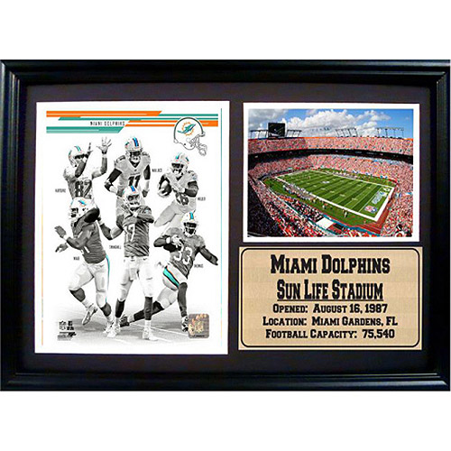 NFL Miami Dolphins Photo Stat Frame, 12x18