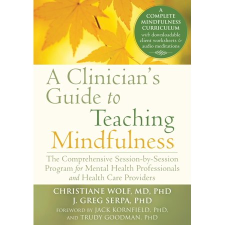 A Clinician's Guide to Teaching Mindfulness : The Comprehensive Session-by-Session Program for Mental Health Professionals and Health Care