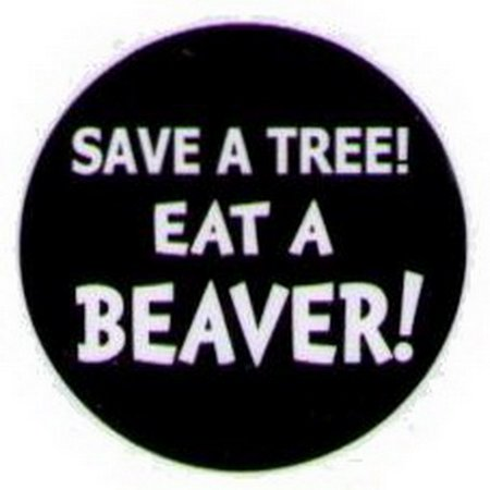 Save A Tree Eat A Beaver Button HB316