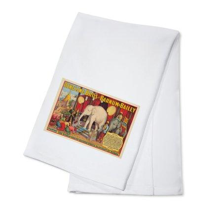 Barnum & Bailey - The White Elephant Vintage Poster (artist: Anonymous) USA c. 1927 (100% Cotton Kitchen Towel) ()