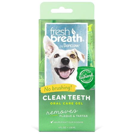 Tropiclean Fresh Mint Foam (Fresh Breath by TropiClean Clean Teeth Oral Care Gel, 4 Oz )