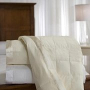 Cambric Cotton White Down Blanket with Satin Trim Ivory - Queen
