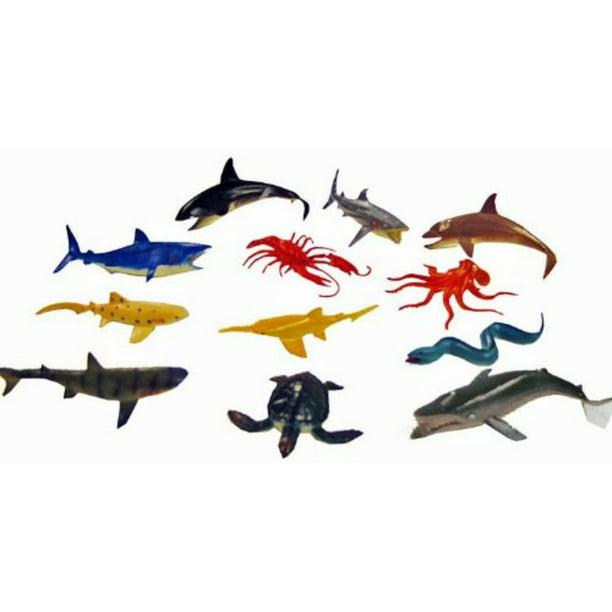 Ocean Sea Animals Creatures