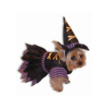 WITCH PET COSTUME-SM (PROMO) (Halloween Promo Items)