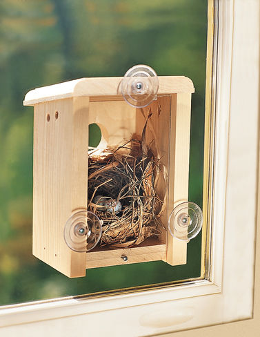 Coveside 10010 Window Nest Box Birdhouse by Coveside Conservation Products