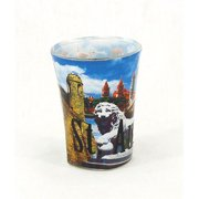 Americaware SGSTA02 St. Augustine Full Color Etched Shot Glass by Americaware