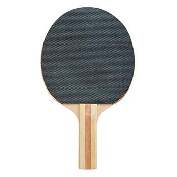 Champion Table Tennis Paddle