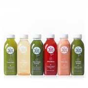 Best 3 Day Cleanses - Jus by Julie 1-Day Blended Juice Cleanse, 12 Review