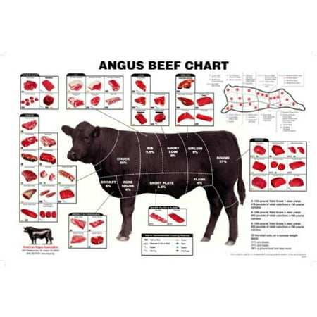 (27x40) Angus Beef Chart Meat Cuts Diagram Poster ...