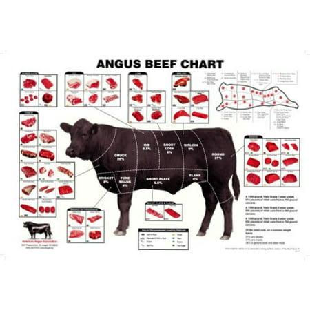 27x40) Angus Beef Chart Meat Cuts Diagram Poster - Walmart.com - Walmart.com