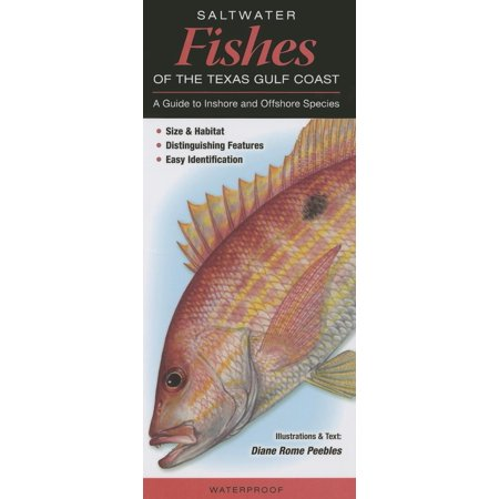 Saltwater Fishes of the Texas Gulf Coast (Gulf Coast Lighthouses)