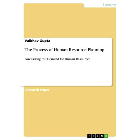 The Process of Human Resource Planning - eBook (Human Resource Planning Process In The Public Sector)
