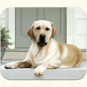 Fiddlers Elbow m22 Yellow Lab-Porch Mouse Pad, Pack Of 2