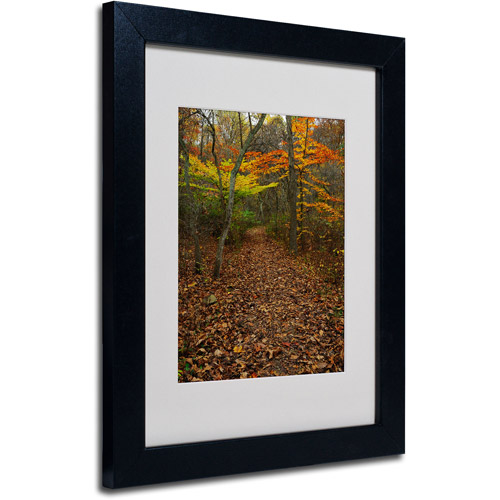 "Trademark Fine Art ""Late Autumn Hike"" Matted Framed Art by Kurt Shaffer, Black Frame"