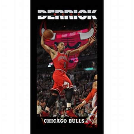 Chicago Bulls Derrick Rose Player Profile Wall Art 9.5x19 Framed Photo - image 1 of 1