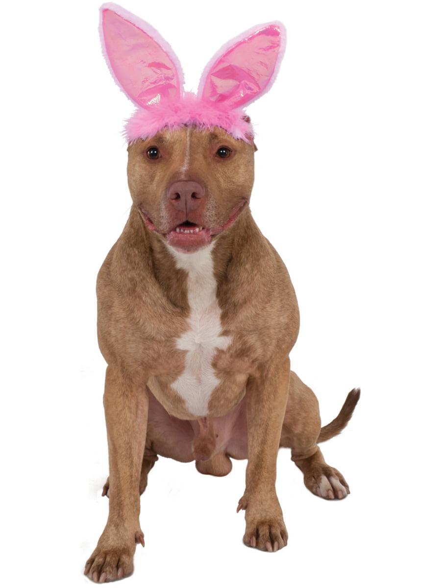 Kentucky Derby Easter Bonnet Hat For Pet Dog Costume Accessory Medium Large