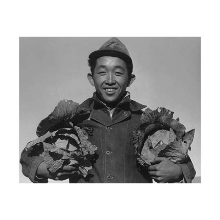 Richard Kobayashi half-length portrait standing facing front holding a head of cabbage in each hand  Ansel Easton Adams was an American photographer best known for his black-and-white photographs of (Best Cabbage For Slaw)