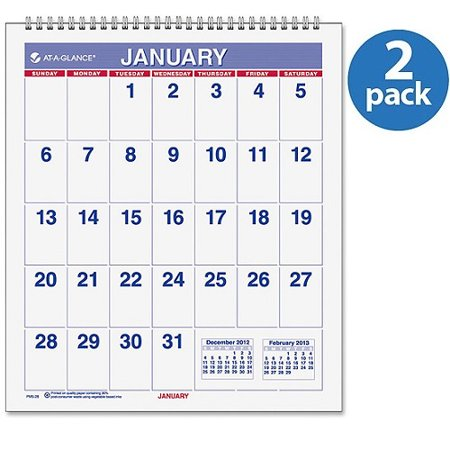 Easel Calendar 2010 ((2 Pack) At-A-Glance Mini Easel Monthly Wall Calendar)