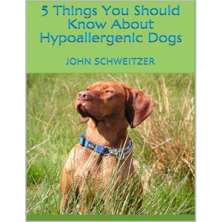 5 Things You Should Know About Hypoallergenic Dogs - eBook