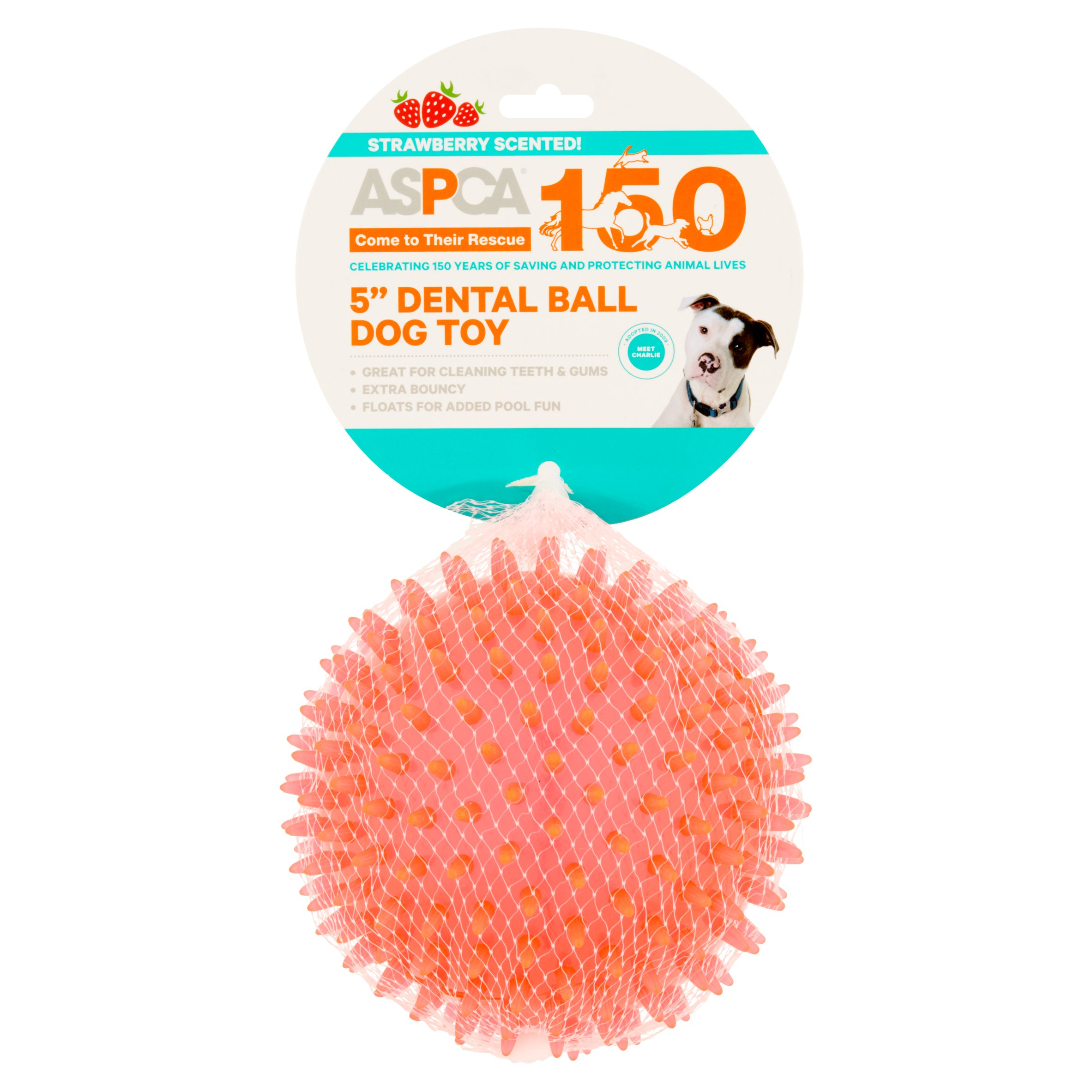 "ASPCA 5"" Dental Ball Dog Toy by European Home Designs, LLC"