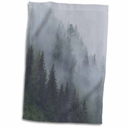 - 3dRose Alaska, Glacier Bay NP, Tongass NF. Fog shrouds trees on steep slopes. - Towel, 15 by 22-inch