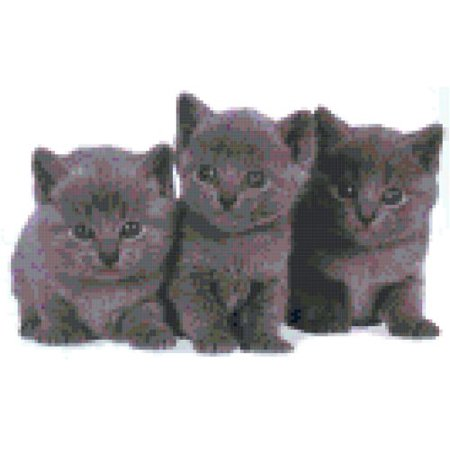 Gray Kittens Trio Counted Cross Stitch Pattern
