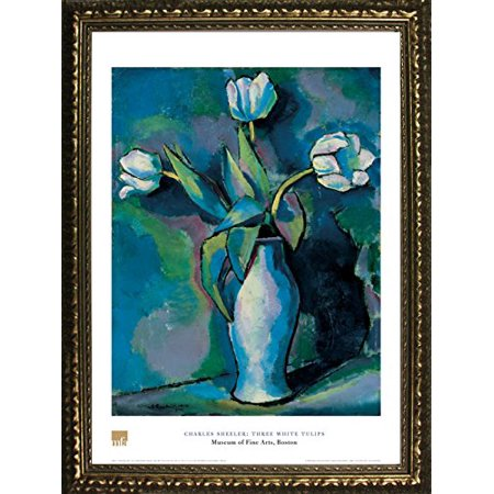 - buyartforless FRAMED Three White Tulips by Charles Sheeler 28x20 Art Print Poster Floral Still Life Famous Painting From Museum of Fine Arts Boston Collection