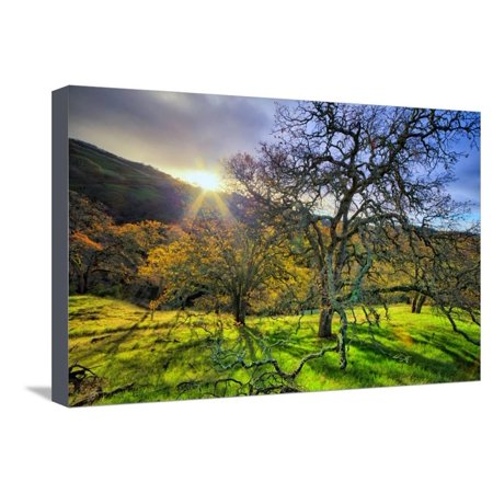 Christmas Morning Light at Mount Diablo, San Francisco Bay Area Stretched Canvas Print Wall Art By Vincent James ()