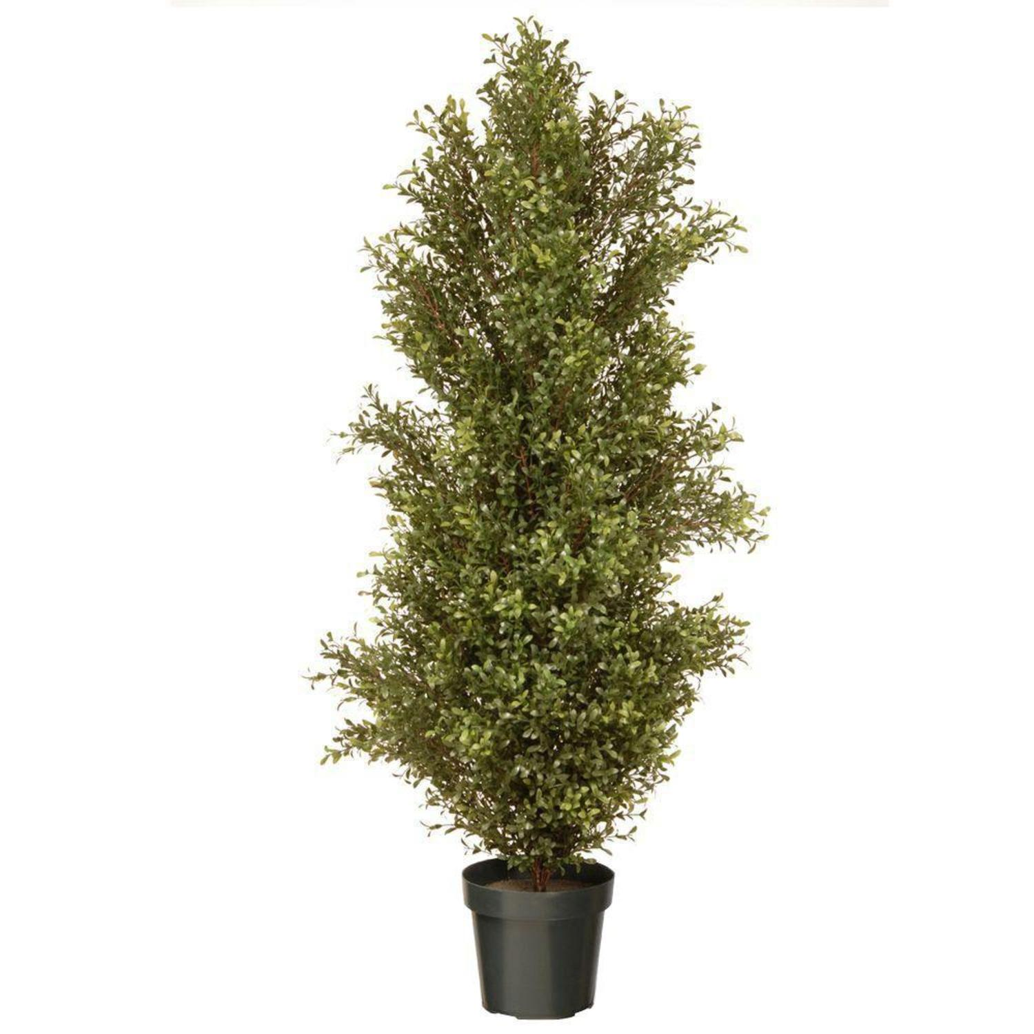 "60"" Potted Tall Artificial Two-Tone Green Argentia Plant"