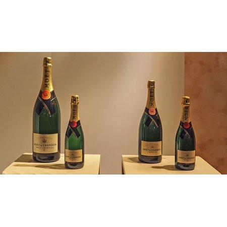 Laminated Poster Bottles France Champagne Luxury Poster Print 24 x 36 (Champagne Bottle)