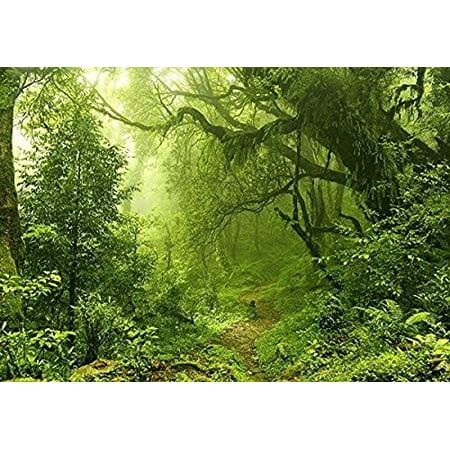 HelloDecor Polyster 7x5ft jungle foliage rainforest safari photo backdrop Scenery background - Safari Themed Backdrop