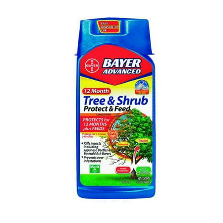 BAYER Advanced 12-Month Tree & Shrub Protect & Feed Concentrate 32 FL OZ(Discontinued by Manufacturer)