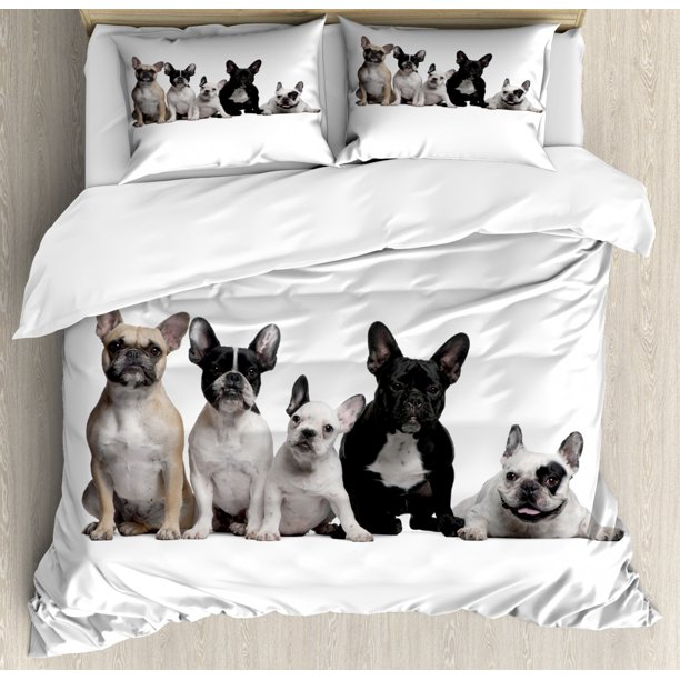 Bulldog Duvet Cover Set, Group of Young French Bulldogs with Adorable Expressions Animal Lover Photo, Decorative Bedding Set with Pillow Shams, Black White Beige, by Ambesonne