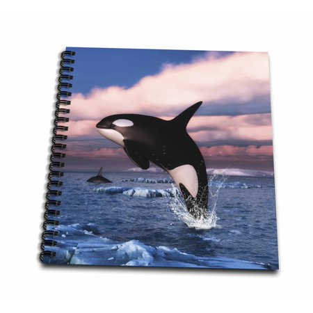 Orca The Killer Whale (3dRose Orca killer whales swimming in the Arctic Ocean - Drawing Book, 8 by)