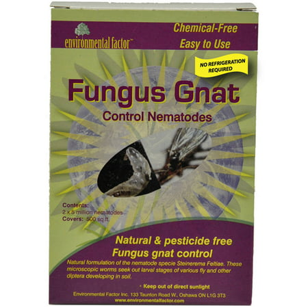 The Environmental Factor 4003220 500 Sq Ft Fungus Gnat Control Nematodes 2-Count