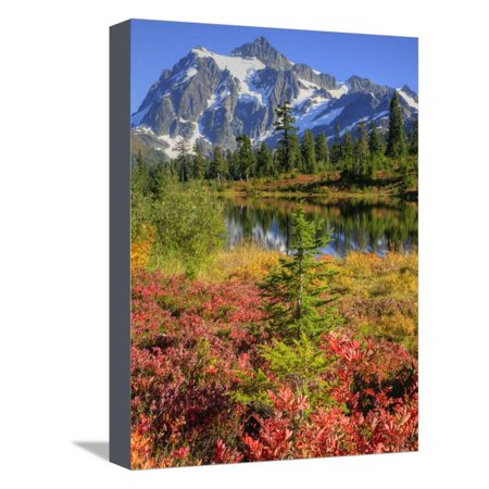 Picture Lake, Mt. Shuksan, Heather Meadows Recreation Area, Washington, Usa Stretched Canvas Print Wall Art By Jamie & Judy Wild