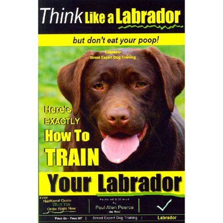 Think Like A Labrador    But Dont Eat Your Poop   Labrador Breed Expert Dog Training  Heres Exactly How To Train Your Labrador